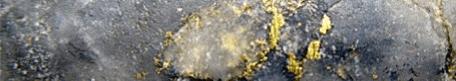 granada gold veins