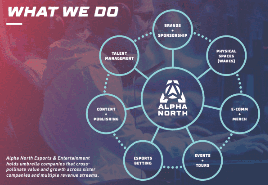 alpha north information what we do