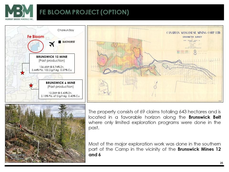 puma fe bloom project info