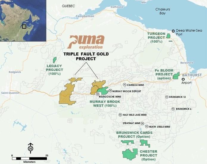 puma project map