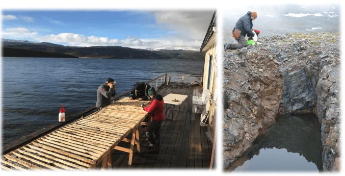 Burfjord IOCG Project