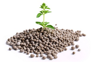 Potash and phosphate India