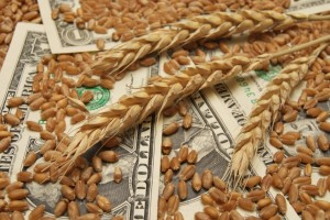 Soft Commodities: 2011 Recap and Outlook for 2012