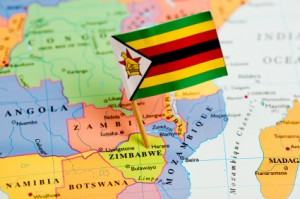 Zimbabwe Tax Focus Could Pressure Ailing South African Producers