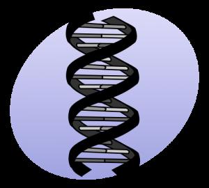 genes_graphicsvg