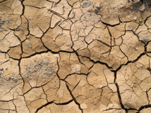 What Do Droughts Mean for Potash Investors?