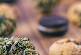 Precision Technology for Medical Dosage in Cannabis Edibles