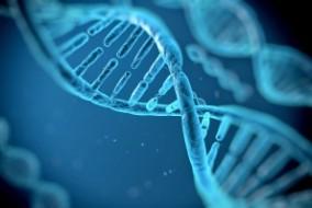 CRISPR Trials To Watch in 2017