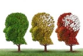 The State of Novel Alzheimer's Treatments