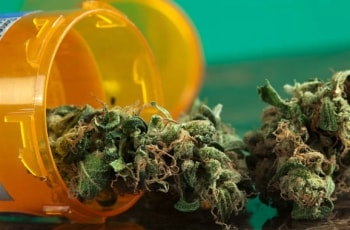 FDA Issues Warning On Companies Marketing Cannabis as Cancer Treatment