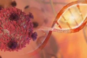 Medicenna CEO Talks on Immuno-Oncology 'Trojan Horse' Drug Candidate Fighting Tumors