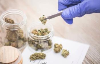 Neil Closner, MedReleaf's CEO Talks Potential for DNA Cannabis Test