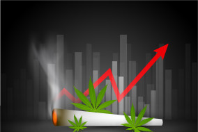 10 Top Canadian Cannabis Stocks