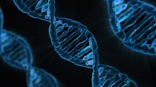 4 Gene Editing Technologies Explained