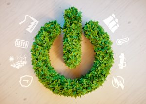 enteropia green energy