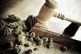 US Lawsuit Seeks To Challenge Cannabis Federal Laws