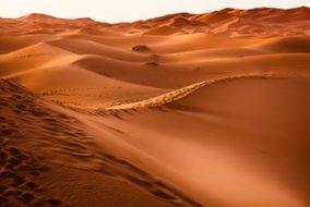 Territorial Dispute Halts Phosphate Rock Shipment from Morocco