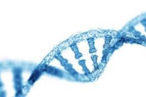 5 Top NASDAQ Genetic Stocks Year-to-Date
