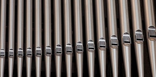 organ-pipes