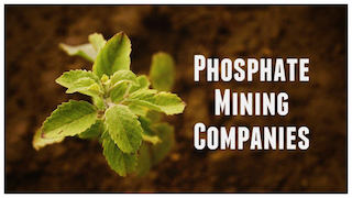 Phosphate-mining Stocks to Watch