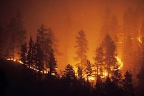 BC Wildfires Hit Copper Operations and Force Thousands from Homes